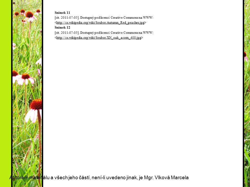 Snímek 11 [cit. 2011-07-05]. Dostupný pod licencí Creative Commons na WWW: <http://cs.wikipedia.org/wiki/Soubor:Autumn_Red_peaches.jpg>
